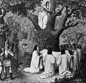 Illustration Of Druid Priests