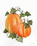 Pumpkin and Vines I