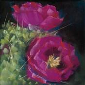 Blooming Succulent III