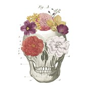 Floral Skull I