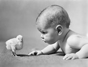 1930s Human Baby Face To Face With Baby Chick