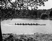1930s Silhouette Sculling Boat Race