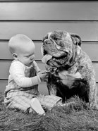 1950s 1960s Baby Sitting Playing With Bulldog