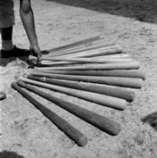 1950s Baseball Player Selecting A Variety Of Bats