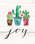 Cacti Joy