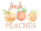 Fresh Peaches II