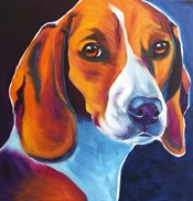 Beagle - Lucy May