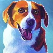 Beagle - Penny