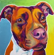 Pit Bull - Red