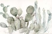 Cactus Garden Landscape Black/White