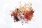 Expressions Lion 2