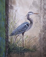 In The Reeds - Blue Heron