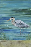 Great Blue - Heron - 1