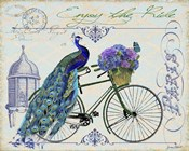Peacock On Bicylce I