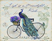 Peacock On Bicylce II