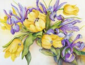 Yellow Tulips with Blue Iris