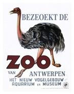 Bezeoekt de Zoo