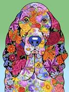Flowers Basset Hound