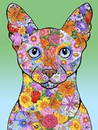 Flowers Siamese Cat