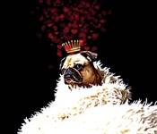 Royal Love Pup - Pug