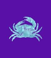 Sponge Crab Aqua