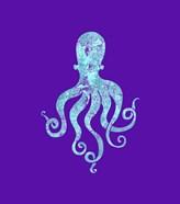 Sponge Octopus Aqua