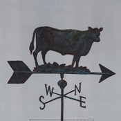 Rural Relic Cow