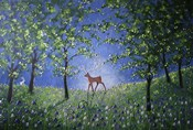 Evening In The Bluebell Wood