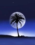 Big Moon Night