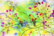 Parrot Forest