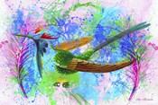 Nest Colors