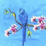 Spring Bird And Flower
