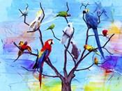 Birds Land !H