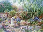 Her Garden