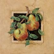 Pear Square