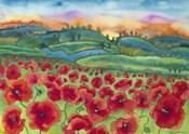 Magical Poppy Field