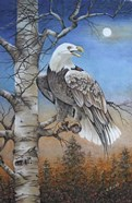 Moonlight Eagle