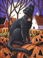Moon Cat & Pumpkins
