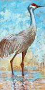 Sandhill Cranes II