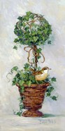 Ivy Topiary IV