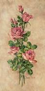 Wood Rose I