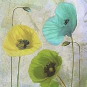 Garden Shimmer I