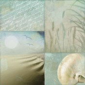 Beach Expressions II