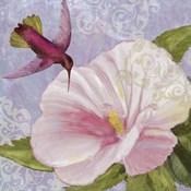 Humming Hibiscus II