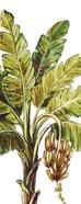 Tropical Palm Paradise II