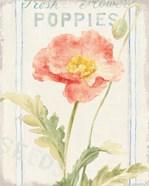 Floursack Florals IV