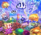 Ocean's Little Wonders