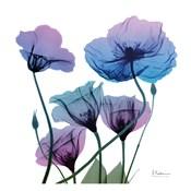 Radiant Bloom 1