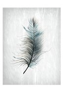 Feathered Dreams 1