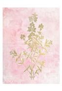 Botanical Pink 2
